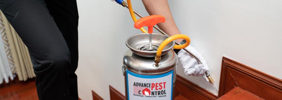 pest-control-richmond